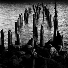 Free Pilings Royalty Free Stock Images - 6884359