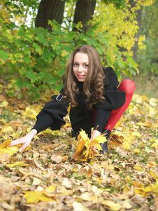 Gathering Leaves In Autumn Forest. Stock Image