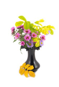 Free Autumn Flowers In Black Vase Royalty Free Stock Image - 6886836