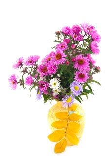 Free Flowers In Yellow Vase Royalty Free Stock Photography - 6886887