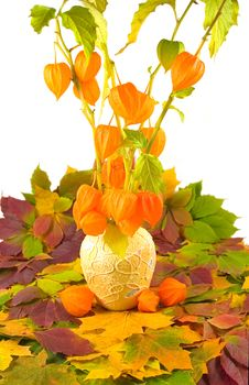 Free Flowers With Fruits In Yellow Vase Stock Photo - 6886890