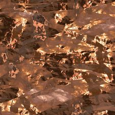 Free Gold Foil Surface Stock Photos - 6887443