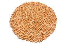 Circle Of Dry Peas Stock Image