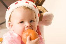 Free Christmas Time Stock Image - 6888851