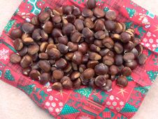 Free Chestnuts Royalty Free Stock Photography - 6889197