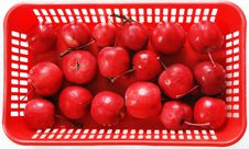 Free Red Apples Stock Image - 6889931
