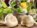 Free Garlic Royalty Free Stock Photography - 6895517