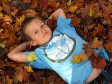 Free Autumn Stock Image - 6891511