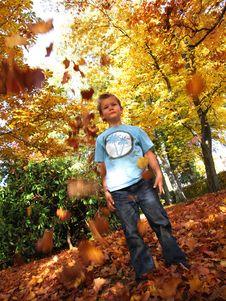 Free Autumn Stock Photo - 6891570