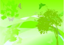 Free Green Tree, Flowers And Butterflies Stock Images - 6891654