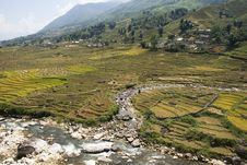 Free Rice Terraces On A River Valley 2 Royalty Free Stock Photo - 6891885