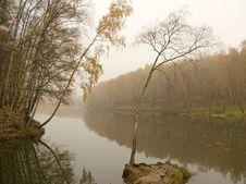 Free Autumn Landscape Royalty Free Stock Photo - 6893445