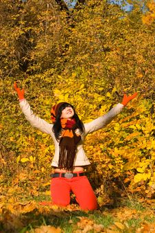 Free Young  Woman In The Autumn Park Royalty Free Stock Photography - 6894317