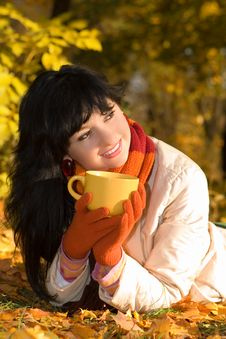 Young Woman With Tea Cup In The Autumn Park Royalty Free Stock Photos