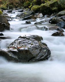 Cool Clear Creek Royalty Free Stock Images
