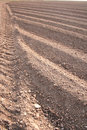 Free Ploughed Field Furrows Royalty Free Stock Photography - 695727