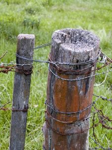 Free Barbwire Fence Royalty Free Stock Photography - 692357