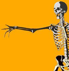 Free Bone 107 Stock Photos - 692673