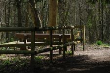 Free Woodland Walk Stock Images - 693294