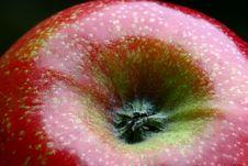 Free Shiny Red Apple Stock Photo - 693390