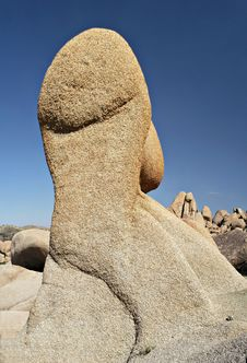 Free Joshua Tree Rock Pinnacle Royalty Free Stock Photos - 696318