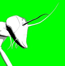 Free Bugs 4 Stock Image - 696611