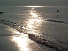 Free Sea Coast Stock Images - 698034