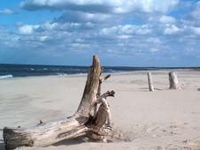 Free Beach Royalty Free Stock Photos - 698038