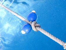 Free Pool Royalty Free Stock Image - 6900106