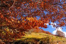 Free Abruzzo Autumn Landscape Stock Photos - 6900383