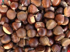 Free Chestnuts Background Stock Images - 6901004