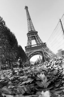 Free Tour Eiffel Stock Photos - 6901923