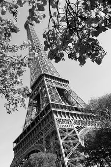 Free Tour Eiffel Stock Photography - 6901942