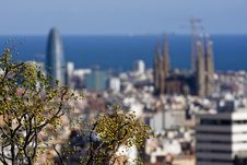 Free Barcelona Panoramic View Royalty Free Stock Images - 6903689