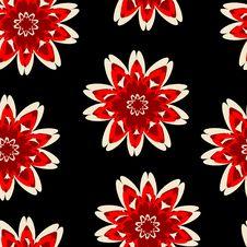 Free Flowers Stock Image - 6906091