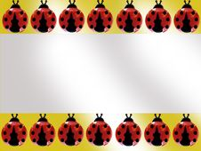 Free Ladybug Stock Photos - 6906483
