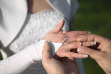 Free Wedding Rings Exchange Royalty Free Stock Image - 6906926