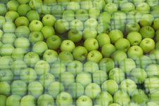 Free Green Apple Stock Photos - 6907033