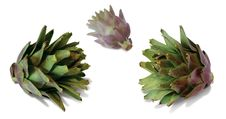 Free Artichokes Royalty Free Stock Photos - 6907328