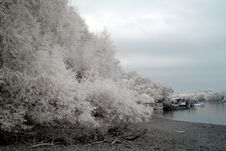 Free Infrared River Shore Stock Photography - 6908132
