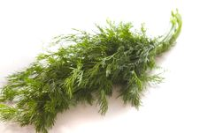 Free Fresh Dill Stock Images - 6908144