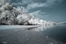 Free Infrared River Shore Stock Images - 6908284