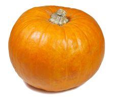 Free Pumpkin Royalty Free Stock Photos - 6909588