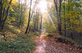 Free Autumn In The Park Stock Images - 6912244