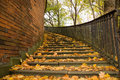 Free Stairs Covered By Leaves In Autumn Royalty Free Stock Photos - 6917208