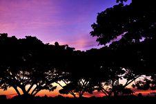Free Sunrise Stock Photo - 6911600