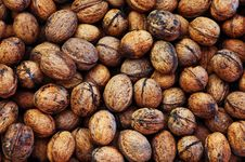 Free Nuts Stock Photo - 6911760