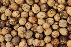 Free Nuts Stock Image - 6911771