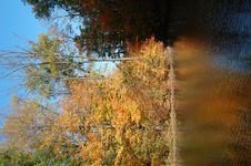 Free Fall Day 2 Stock Photos - 6915093