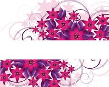 Free Floral Background Stock Image - 6915231
